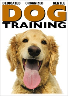 trainingsecrets